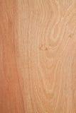 Wood backgrond. Arkivfoton