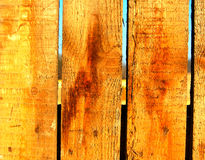 Wood  background. Natural wood  background, pine fence close-up Royalty Free Stock Images