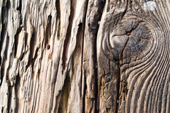 Wood background. Dark Rich Wood grain texture background with knots and strong lines Royalty Free Stock Image