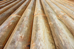Wood background Royalty Free Stock Photos