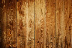 Wood background Stock Image