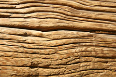 Wood background. Surface of the old log with many cracks Royalty Free Stock Image