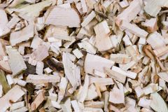 Wood background. Hackled wood as background Stock Photo