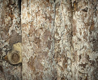 Wood Background. S outdoor and horizontal image Royalty Free Stock Photos