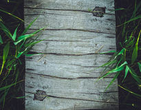 Wood background with bamboo royalty free stock photos