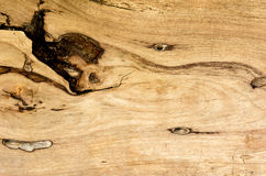 Wood background. A beautiful old wooden background stock images