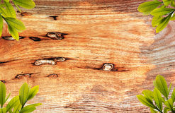 Wood background. A beautiful old wooden background stock photography