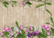 Wood background with border of beautiful flowers Stock Images