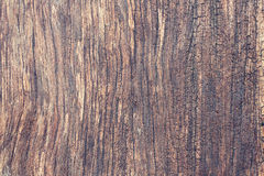 Wood Background. Closeup on old vintage texture wood Royalty Free Stock Photos