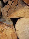 Wood background. Closeup to wood stock images