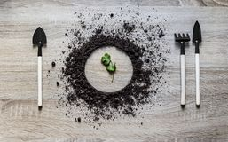 Wood background concept ground piled circle dish spoon fork fork rake laying texture planting sprout green leaf Royalty Free Stock Images