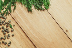 Wood background with dill and pepper frame Stock Images