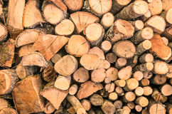 Wood Background - Ecological wooden pattern Royalty Free Stock Photo