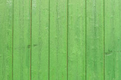 Wood background at fresh green Royalty Free Stock Photo