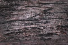 Wood background. Wood gray texture background with old age Stock Photo