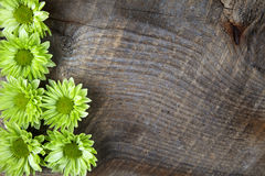 Wood background with green flower Stock Photo