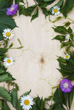 Wood background with green foliage and flowers Royalty Free Stock Photography
