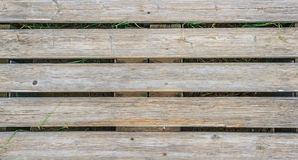 Wood background. With green vegetation Royalty Free Stock Photos