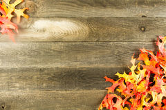 Wood background with leaves Stock Image