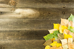 Wood background with leaves Royalty Free Stock Photo