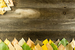 Wood background with leaves Stock Photo