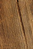 Wood background macro Stock Photography