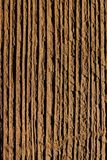 Wood background macro Royalty Free Stock Image