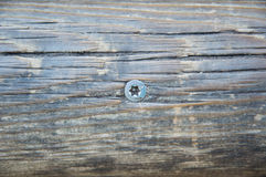 Wood background with metal screw Stock Images