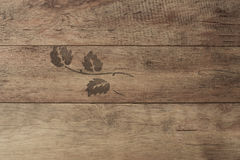 Wood background. Old wood texture with knots. Wood texture with leaf decoration, Wooden plank grain background. Stock Photography