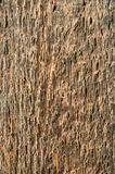Wood background. old wooden board close up. Wood background. rough old wooden board close-up Stock Images