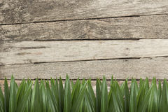 Wood background pattern Stock Photos