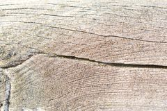 Wood background patterns in the old and new wood pieces. Old and new wood backgrounds of planks and beams, photographed with macro, patterns and worn surfaces stock photo