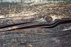 Wood background patterns in the old and new wood pieces. Old and new wood backgrounds of planks and beams, photographed with macro, patterns and worn surfaces stock image
