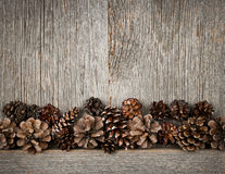 Wood background with pine cones. Rustic natural wooden background with pine cones Stock Photography