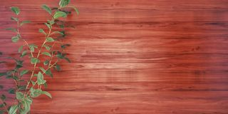 Wood background with a plant 3D illustration stock illustration