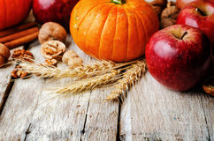 Wood background with pumpkin, apples, wheat, honey and nuts Stock Image