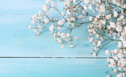 Wood background retro and flowers valentine days Stock Images