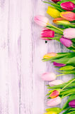 Wood background with spring colorful tulips Royalty Free Stock Images