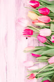 Wood background with spring colorful tulips Royalty Free Stock Image