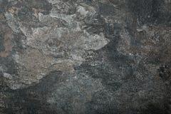Wood background/texture Stock Image