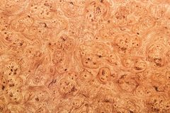 Wood background or texture Royalty Free Stock Photography