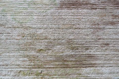 Wood background texture. Texture Bark, nature texture Stock Images