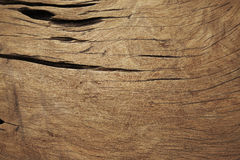 Wood Background Texture. Texture of wood natural background Stock Image