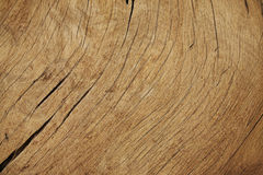 Wood Background Texture. Texture of wood natural background Stock Photo