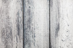 Wood Background Texture stock images