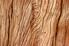 Wood background. Wood texture background, stock photo Stock Photos