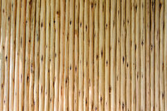 Wood background. Textures Stock Photo