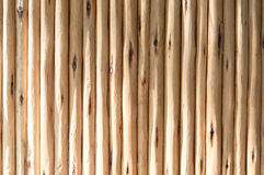 Wood background. Textures Royalty Free Stock Images