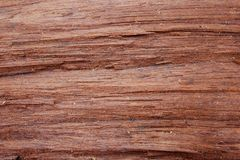 Wood background and textures stock images