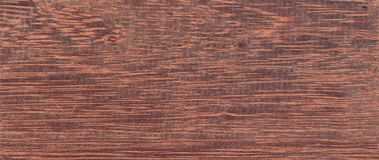 Wood from the tropical rainforest - Suriname - Andira Coriacea Pulle royalty free stock images
